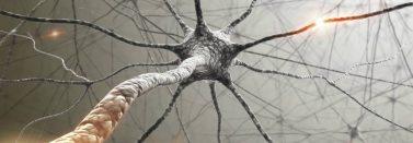 Funct. Neur.