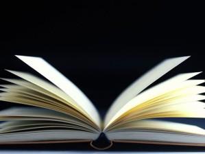 2016 book